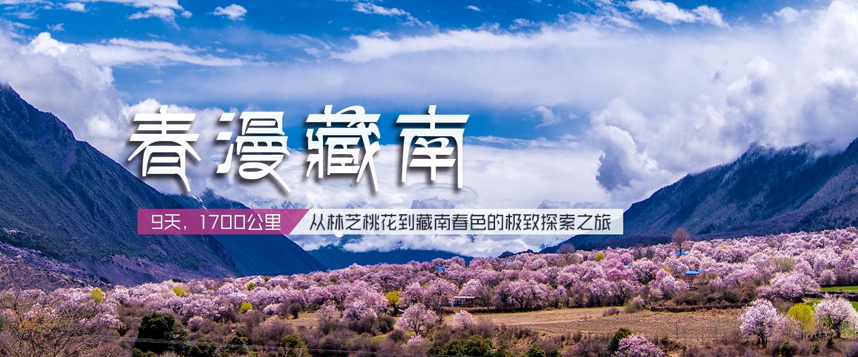 春漫藏南banner.jpg