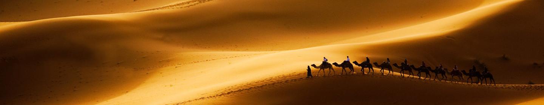沙漠pc-B.jpg